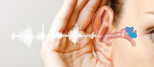 Зайцева Ольга Владимировна, кандидат медицинских наук, рассказывает о проблематике шума в ушах